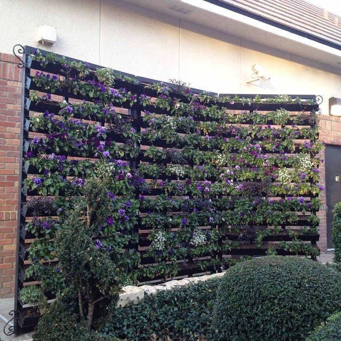 Rain Gutter Flower Wall