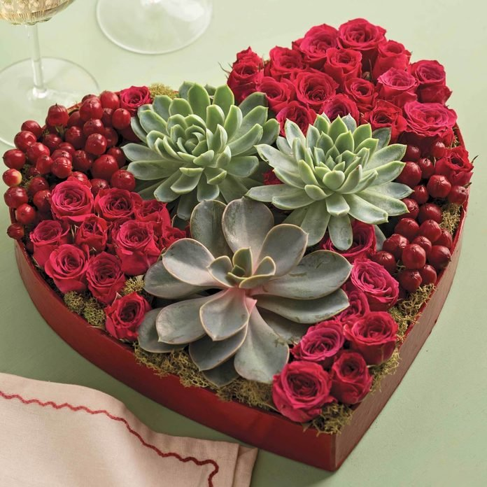 succulents valentine roses heart shaped