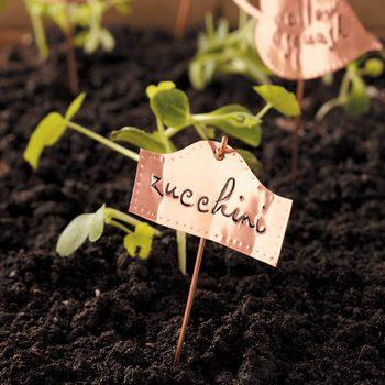 classic-copper-plant-markers-zucchini