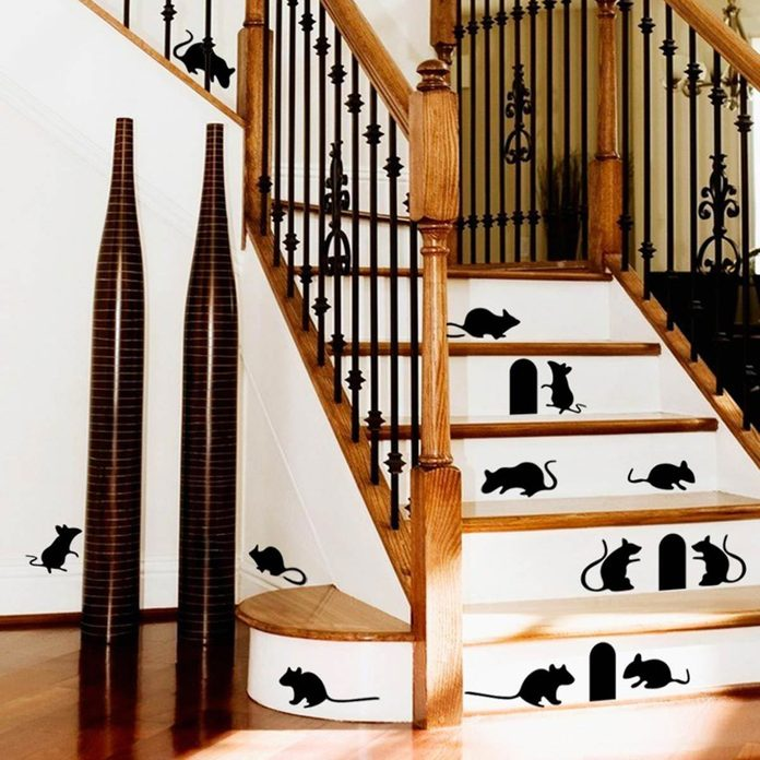 mice stairs decal risers