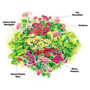 Recipes for Perfect Flower Containers