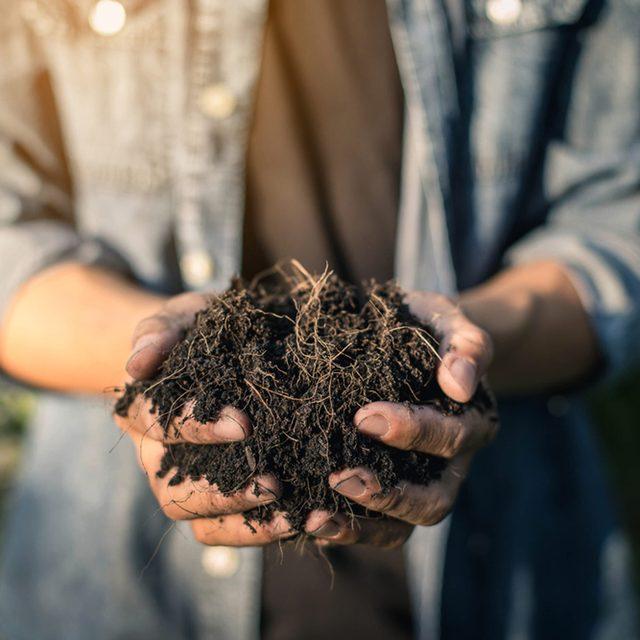 Try Compost Tea