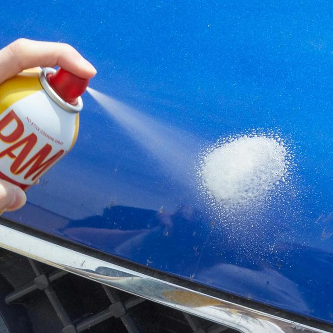 HH pam cooking spray clean bug splats