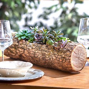 How to Make a Wood Log Planter for Succulents