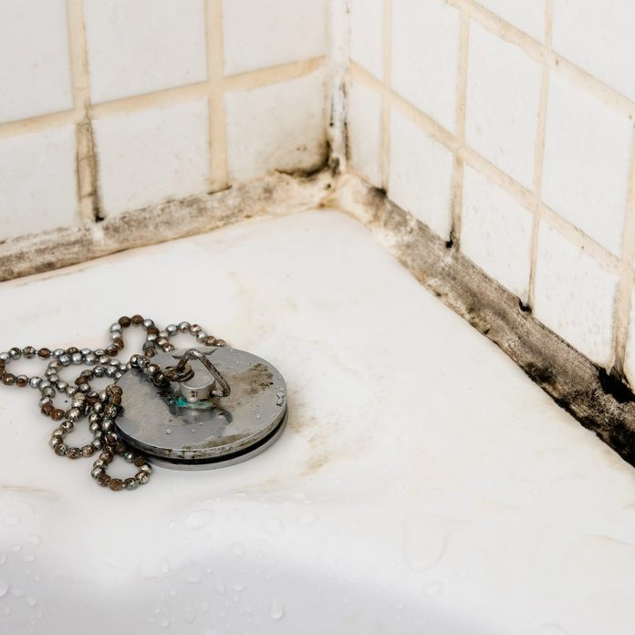black mold in bathroom tiles