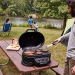 The Best Portable Gas Grills for Your Next Camping Trip or Tailgate