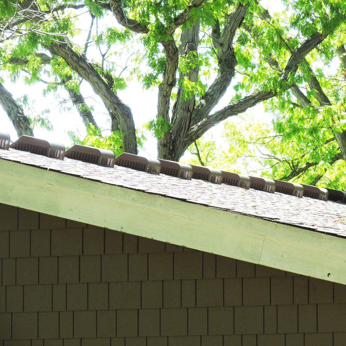 A line of roof vents   Construction Pro Tips