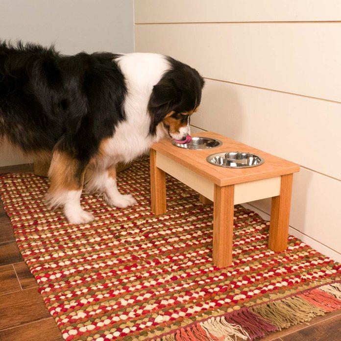 saturday morning workshop dog bowl stand max