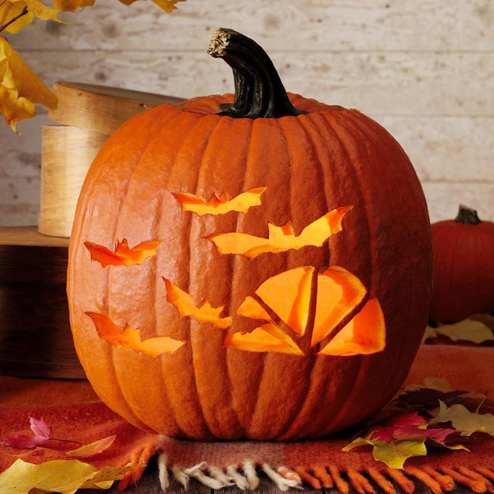 bats window pumpkin jack o'lantern