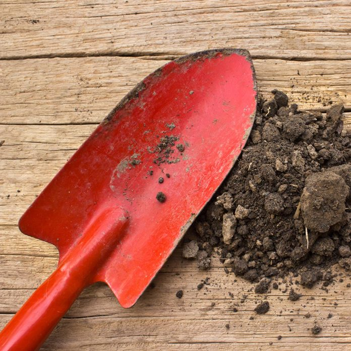 gardening tools and soil on a wood background; Shutterstock ID 162547868; Job (TFH, TOH, RD, BNB, CWM, CM): Taste of Home