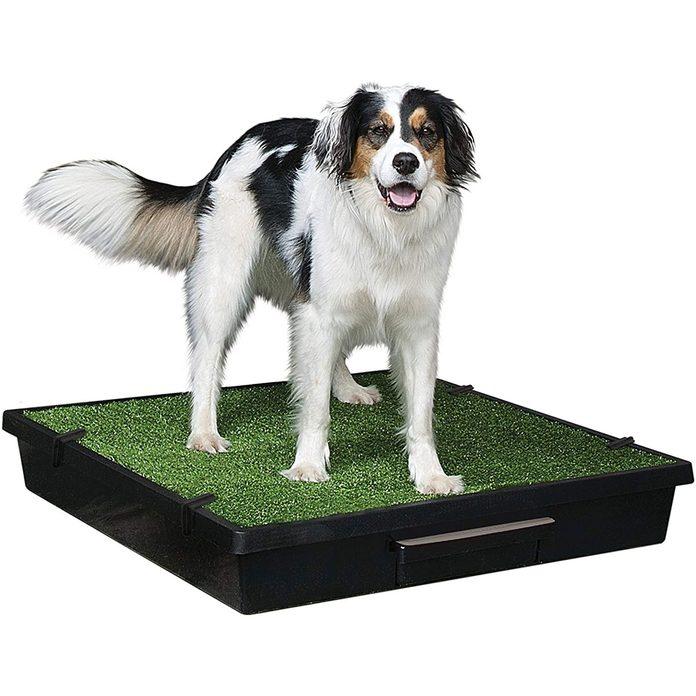 Dog Potty Mat