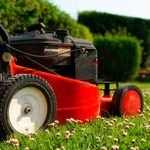 Lawn-Cutting Do's and Don'ts to Avoid Grass Damage