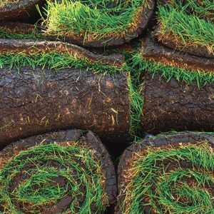 How to Prep for Sod Installation
