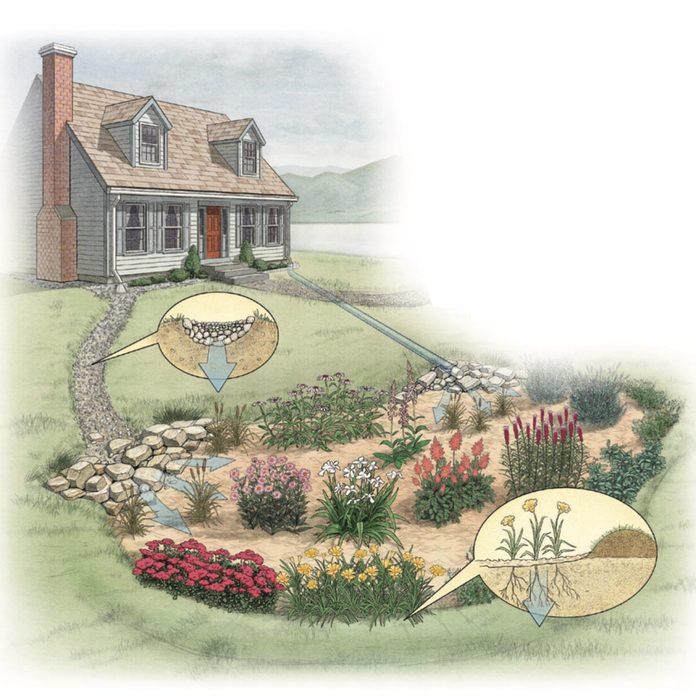 Build a Rain Garden diagram