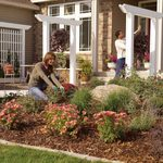 10 Best Curb Appeal Before and After Makeovers