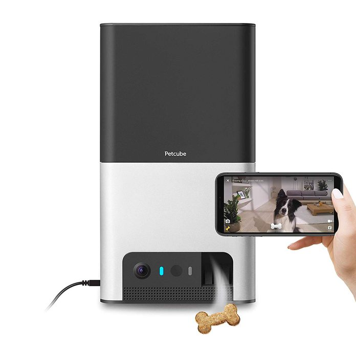 Smart pet food dispenser and video camer