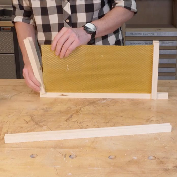 bee hive assemble frame
