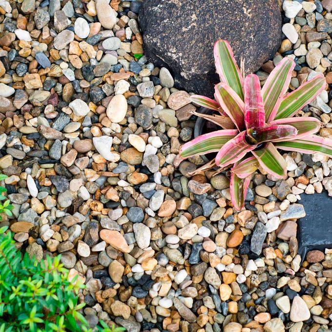 pea gravel flower bed