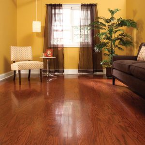 Refinish Hardwood Floors in One Day: How to Refinish Wood Floors Step by Step