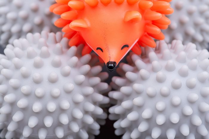 dryer balls hedgehog