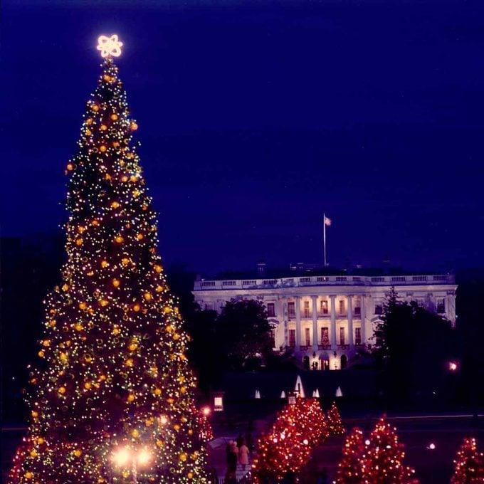 1972-Christmas_White_House_Tree