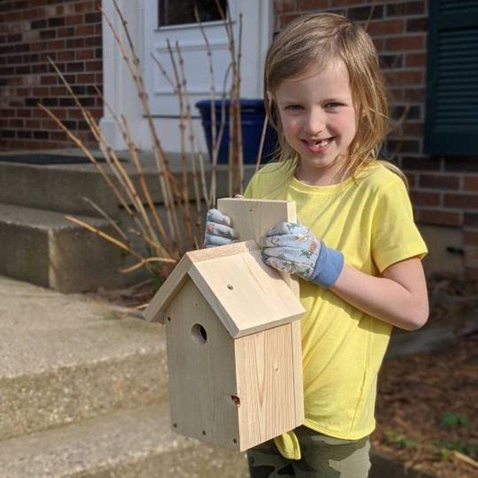 DIY birdhouse kit