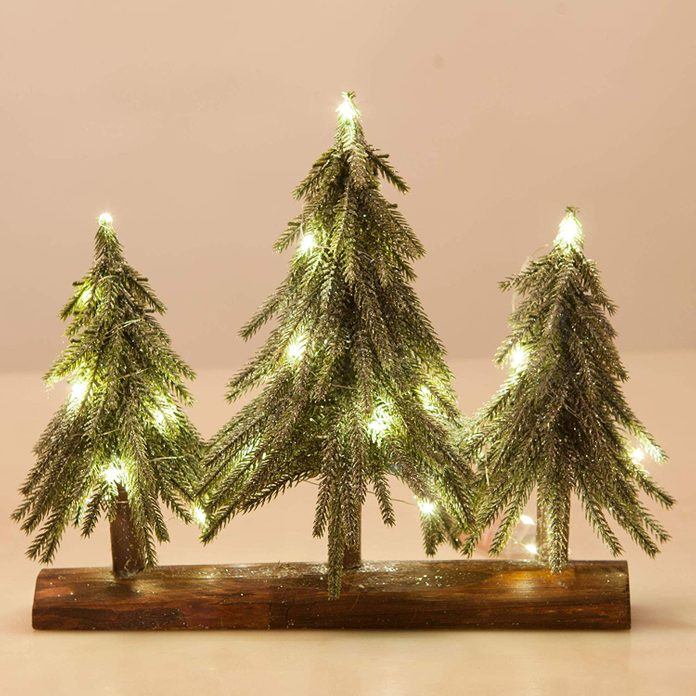 Christmas Trees with Lights