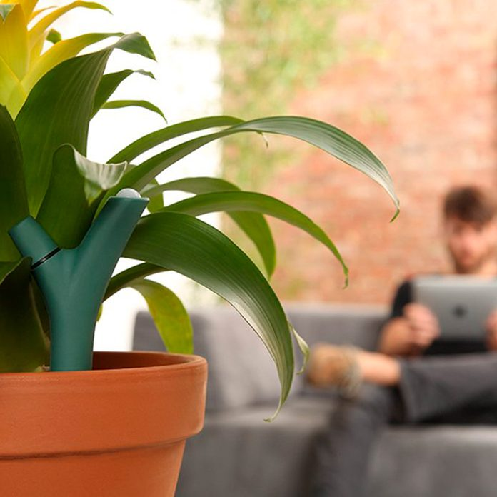 plant smart watering system
