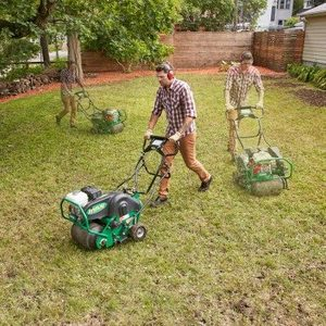 How to Restore a Weedy & Patchy Lawn