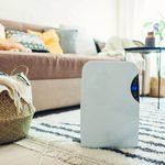 Can An Air Purifier Kill Germs in the Air?