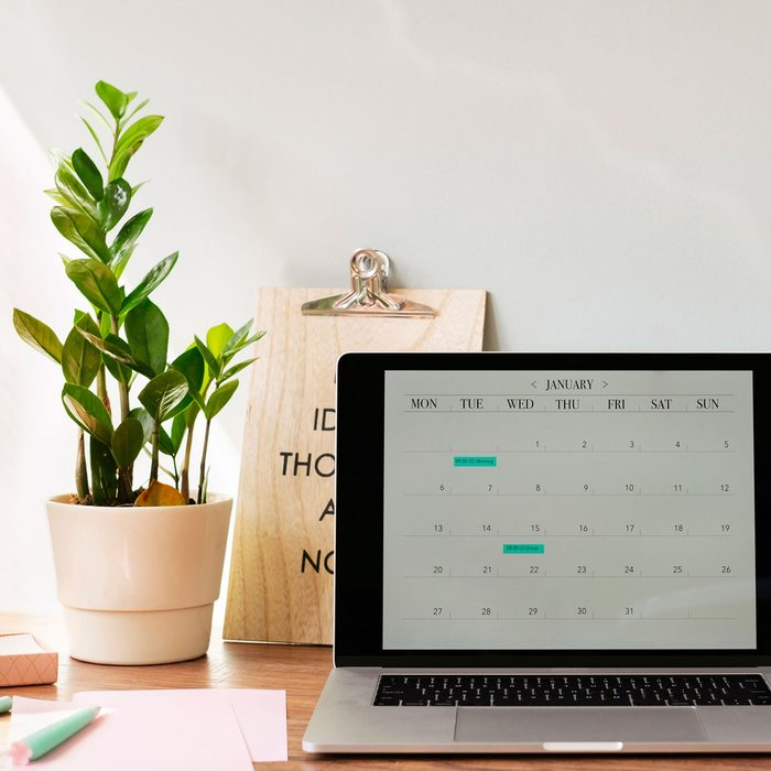 Home office with a plant