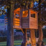 DIY Treehouse Ideas and Helpful Building Tips