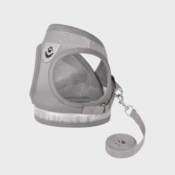 Gauterf Cat Universal Harnesses And Leash,