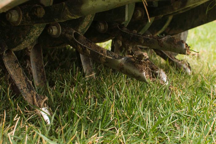 Lawn Aeration Gettyimages 1293930243