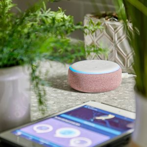 How to Set Up the Amazon Echo Dot