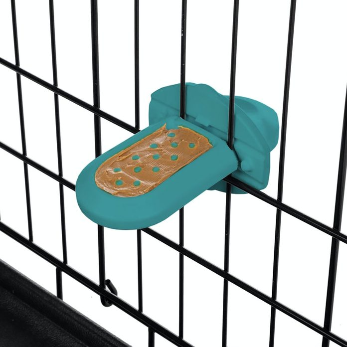 Tog crate training toy