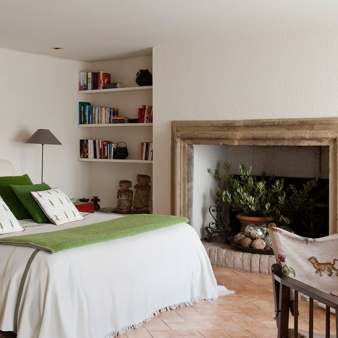 Fireplace with a houseplant
