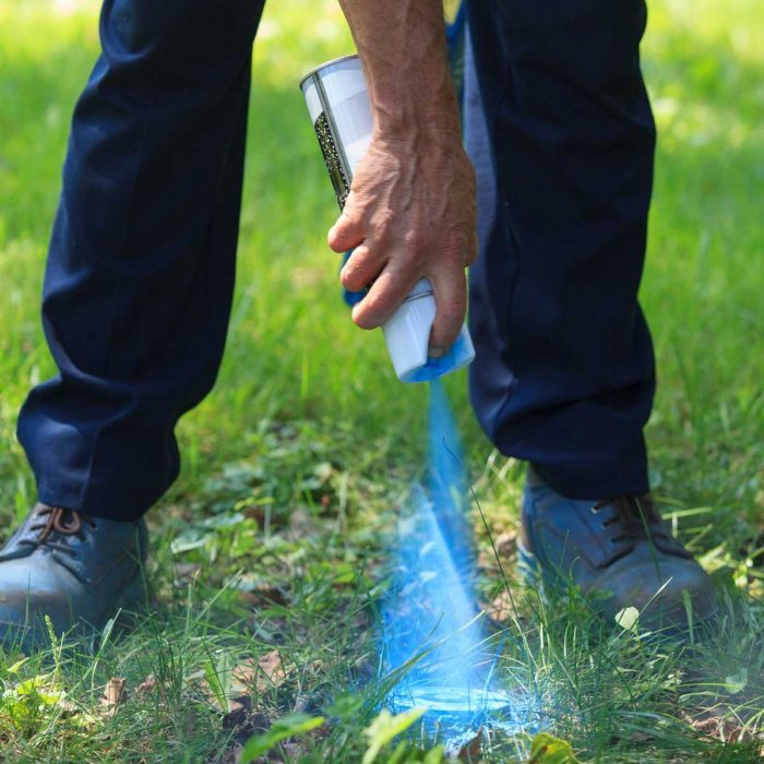 Spray Paint Grass