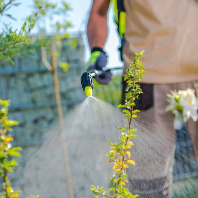 Spray Garden Chemicals