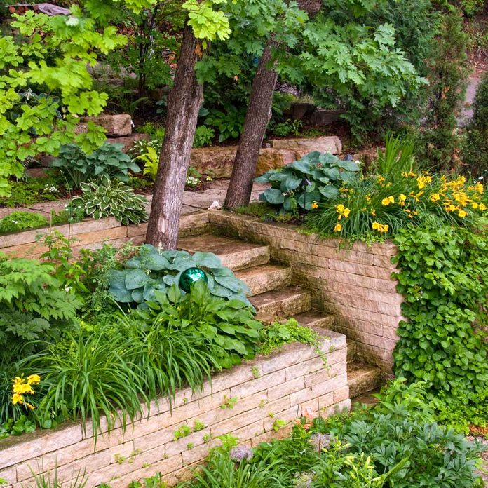 Landscaping design with hostas and daylilies