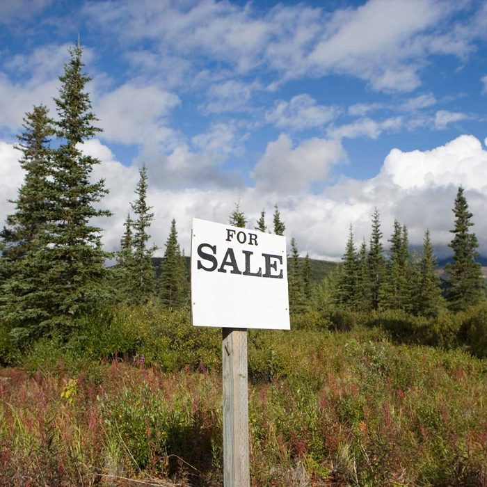 Lot For Sale Gettyimages 200477280 001