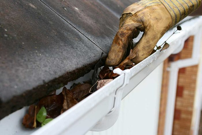Cleaning Gutters0gettyimages 182463295