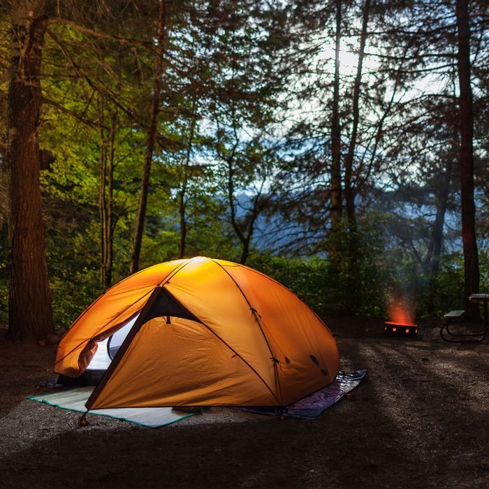 tent in a forest with a fire pit