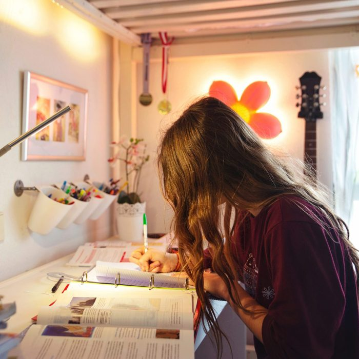 Student girl studying at home in her room