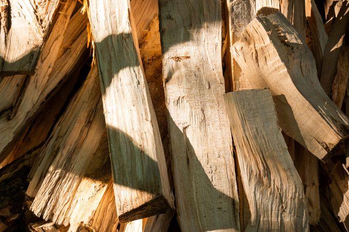 Fresh cut firewood