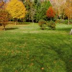 When To Stop Watering the Lawn in Fall