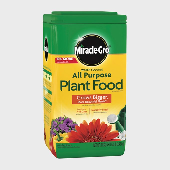 Miracle Gro All Purpose Plant Food